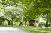 Cabin at Dale Farm