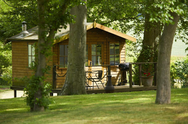 Cabin in daylight