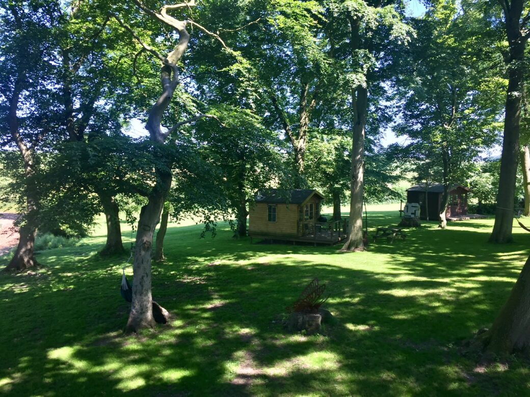 Cabins at Dale Farm