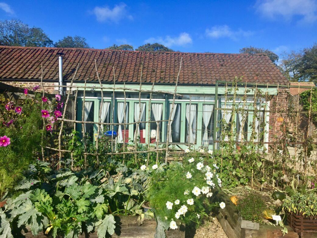 A garden at Dale Farm